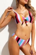 Многоцветный полосатый галстук спереди Детализированный купальник для бикини