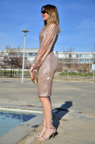 Nude Sequin Tassel Bleeve Bodycon Evening Dress