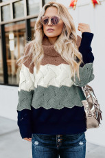 Turtle Neck Color Block Fluffy Twist Sweater