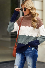 Turtle Neck Color Block Fluffy Twist Sweater