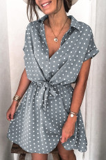 Mini rochie cu mânecă scurtă cu guler de cămașă cu buline