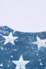 النجوم والخطوط الأمريكية الملهمة